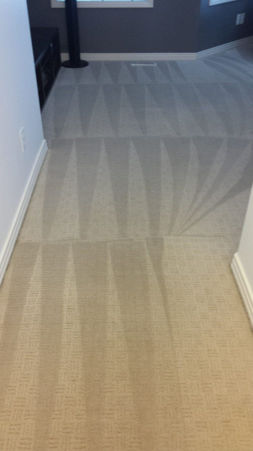 Ideal Maids Carpet Cleaning